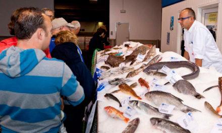 Alles over vis
