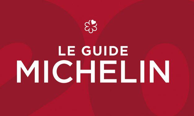 110e GUIDE MICHELIN FRANCE