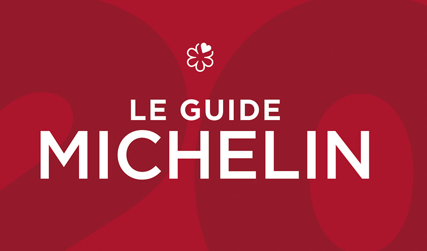 110e GUIDE MICHELIN FRANCE