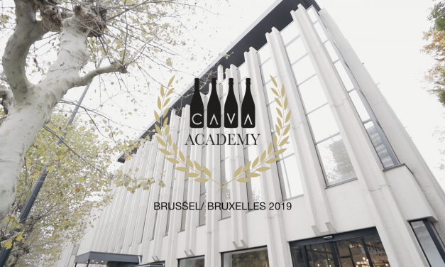 Cava Academy @ Excellis aftermovie