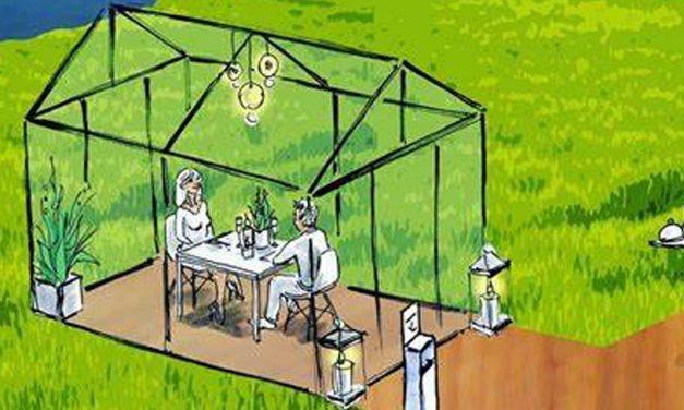 Hardiquest-Kaisin: ontmoeting van artistieke talenten in 'Greenhouses'