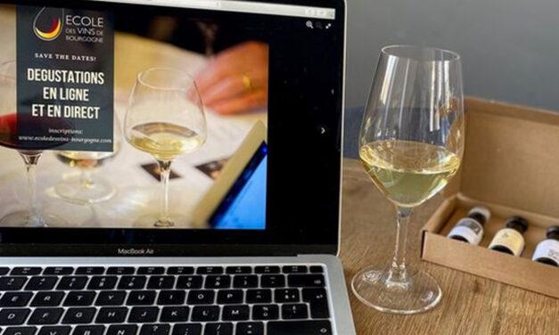 l'Ecole des vins de Bourgogne propose des cours en ligne et en direct !